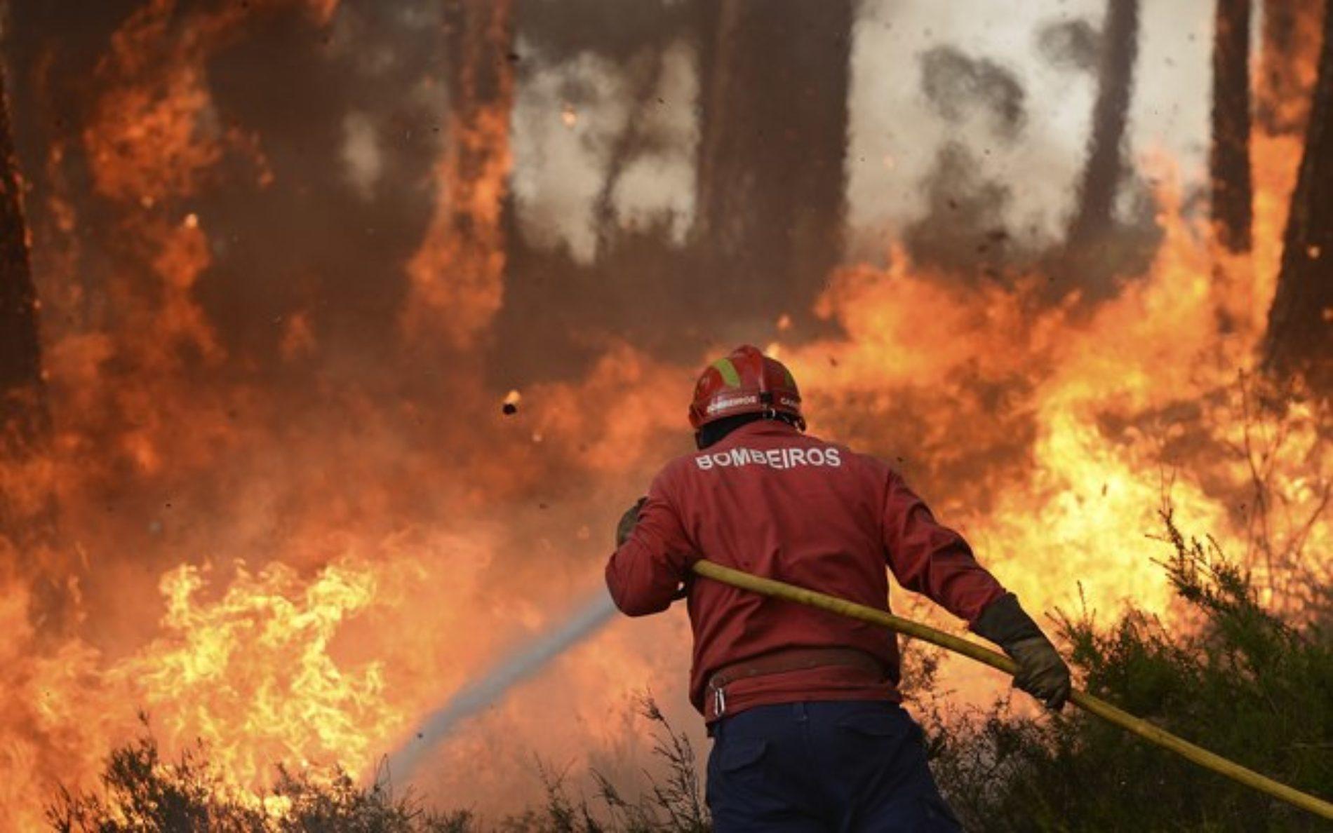 Incêndio consumiu armazém em Gouveia