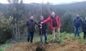 Quercus e FNAPF assinalaram Dia da Floresta em Oliveira do Hospital e pediram maior investimento na floresta nacional