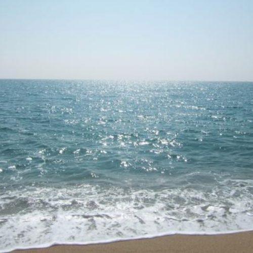 """Banhos interditados na praia do Pedrógão devido a deteção de """"substância"""" na água"""