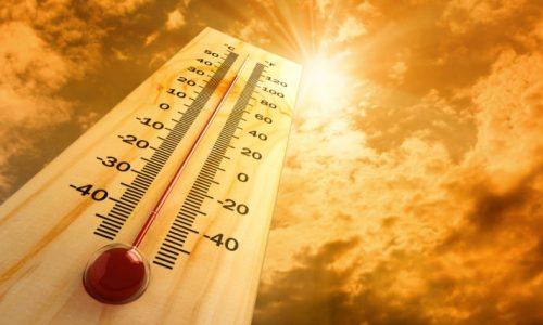 Oito distritos em risco máximo de incêndio: Temperaturas próximas de 40ºC. 14 Distritos em risco extremo de exposição aos raios UV