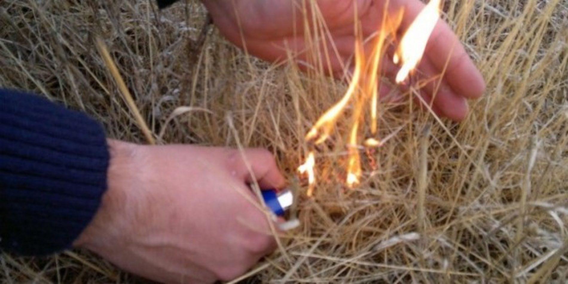 Viseu: Homem detido por ter ateado um foco de incêndio florestal