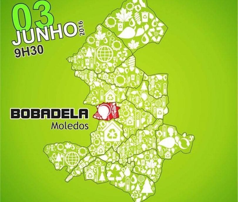 """Amanhã é """"Dia de Limpar Portugal"""" em Oliveira do Hospital"""