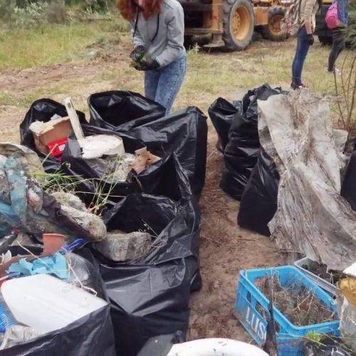 Mais de 70 voluntários eliminaram lixeira na Bobadela