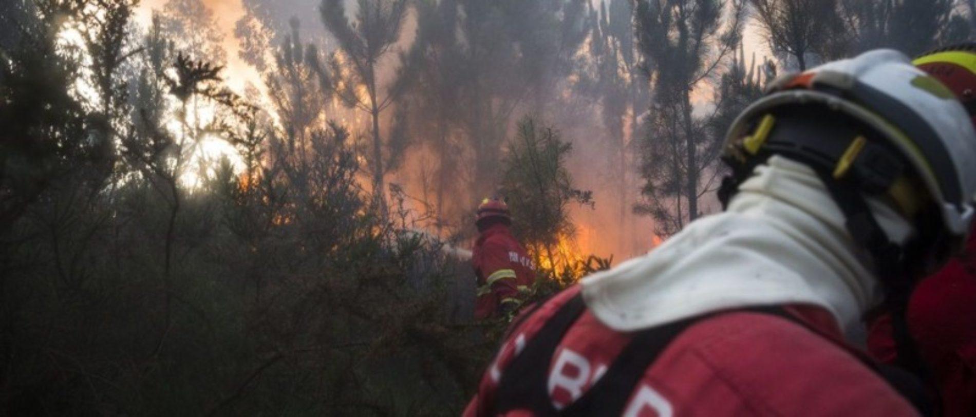 Incêndio em Tábua mobiliza 288 operacionais e sete meios aéreos