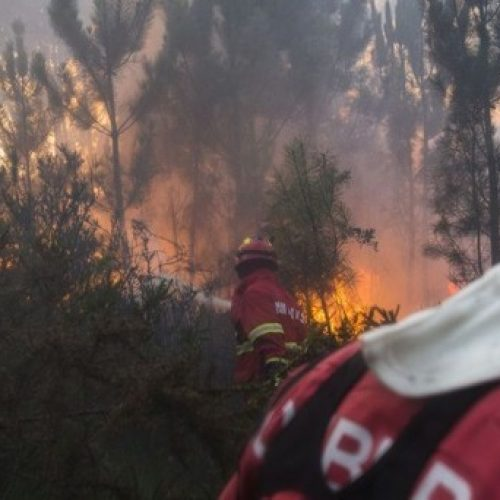 Fogo em Celorico da Beira ameaçou casas durante a noite e continuava ativo ao início da manhã