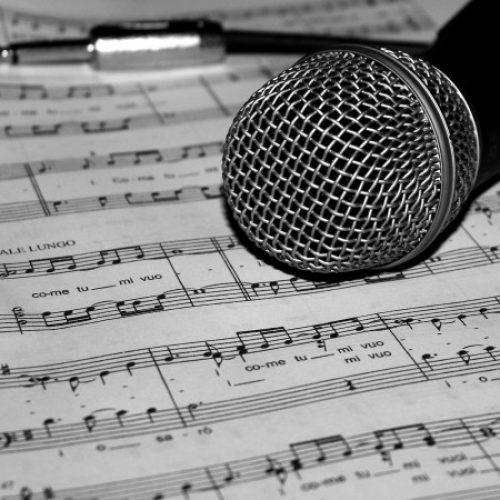 Seia promove Festival Internacional da Canção Serra da Estrela
