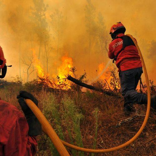 """Proteção Civil prevê um """"dia de muito trabalho"""" no combate aos fogos"""