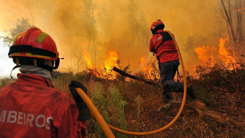 Incêndios no distrito de Viseu mobilizaram mais de uma centena de bombeiros