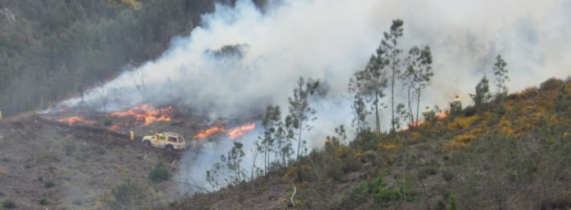 País: Época crítica em incêndios começa hoje com dispositivo idêntico a 2015