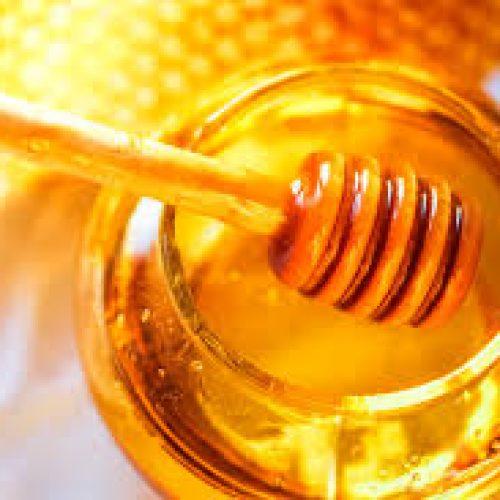 ASAE apreende 350 quilos de mel na região Centro