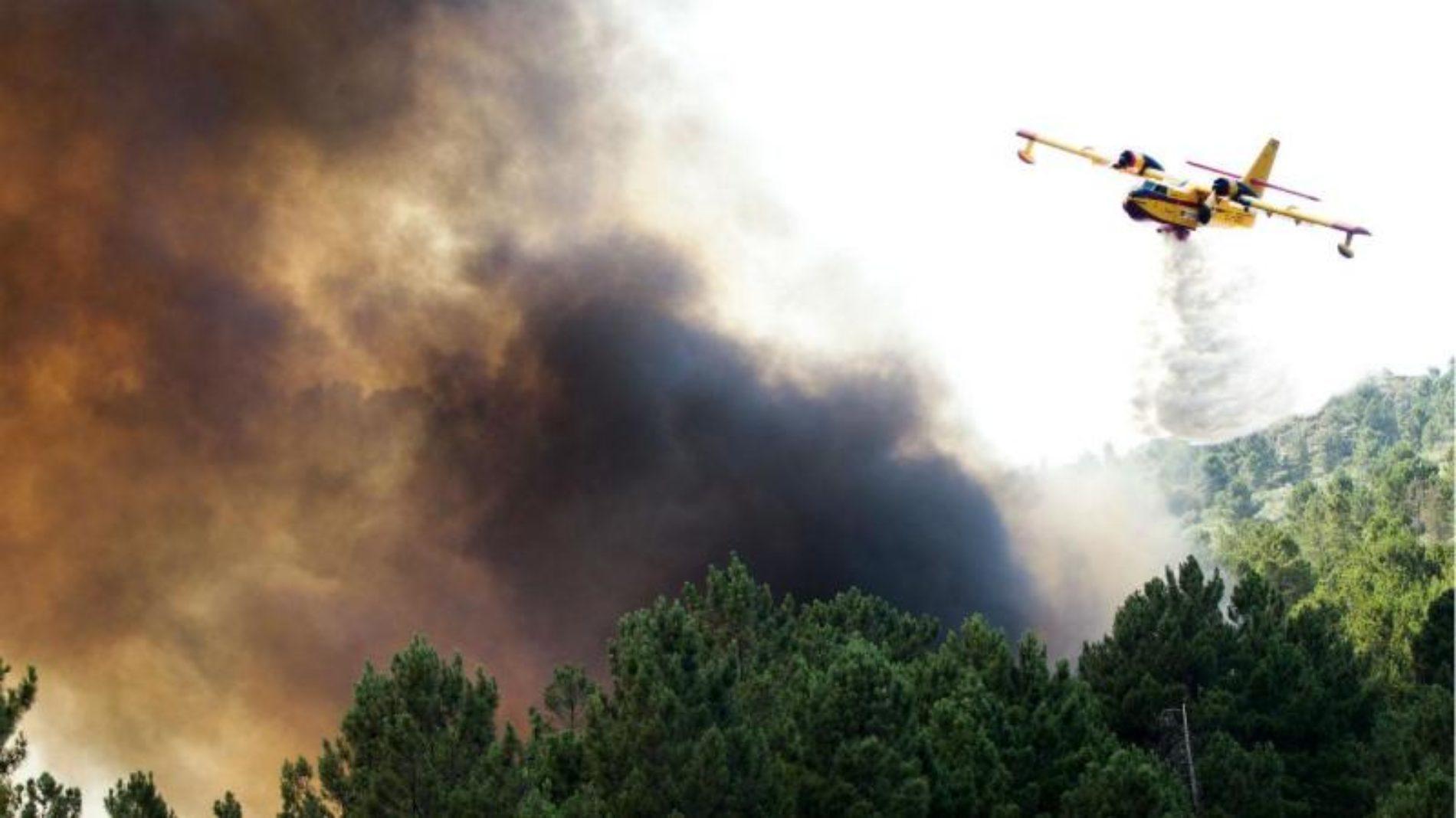 Região: Fogo em Alvaiázere que mobilizou oito meios aéreos está em fase de resolução