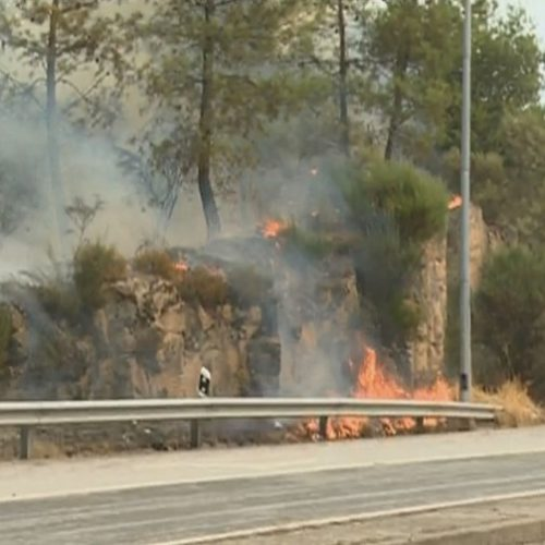 GNR deteve seis pessoas em Castelo Branco, Guarda e Viseu por crime de incêndio florestal