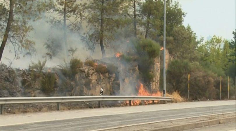 Proteção Civil alerta para aumento do perigo de incêndio até final da semana