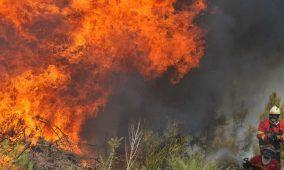 Homem de 67 anos detido por atear fogo na serra da Lousã