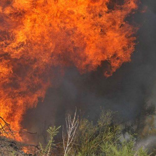 """Alerta para risco de incêndio em """"níveis muito elevado a máximo"""""""