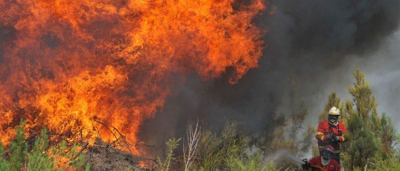Doze fogos no Norte do país preocupam devido ao vento e dimensão