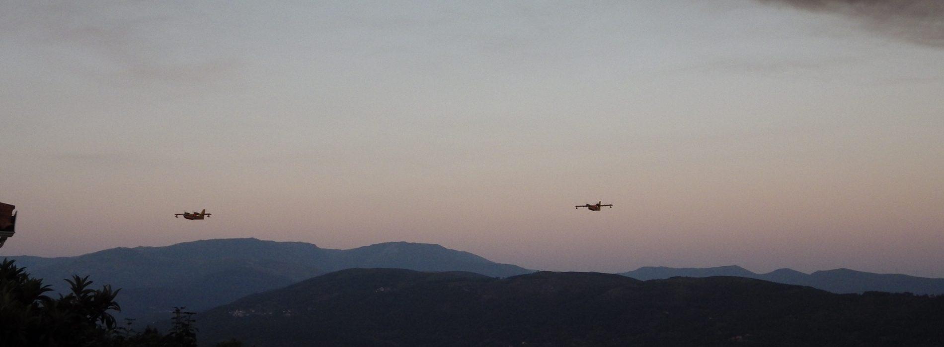 Incêndios: Meios aéreos em Faro, Vila Real, Guarda e Bragança