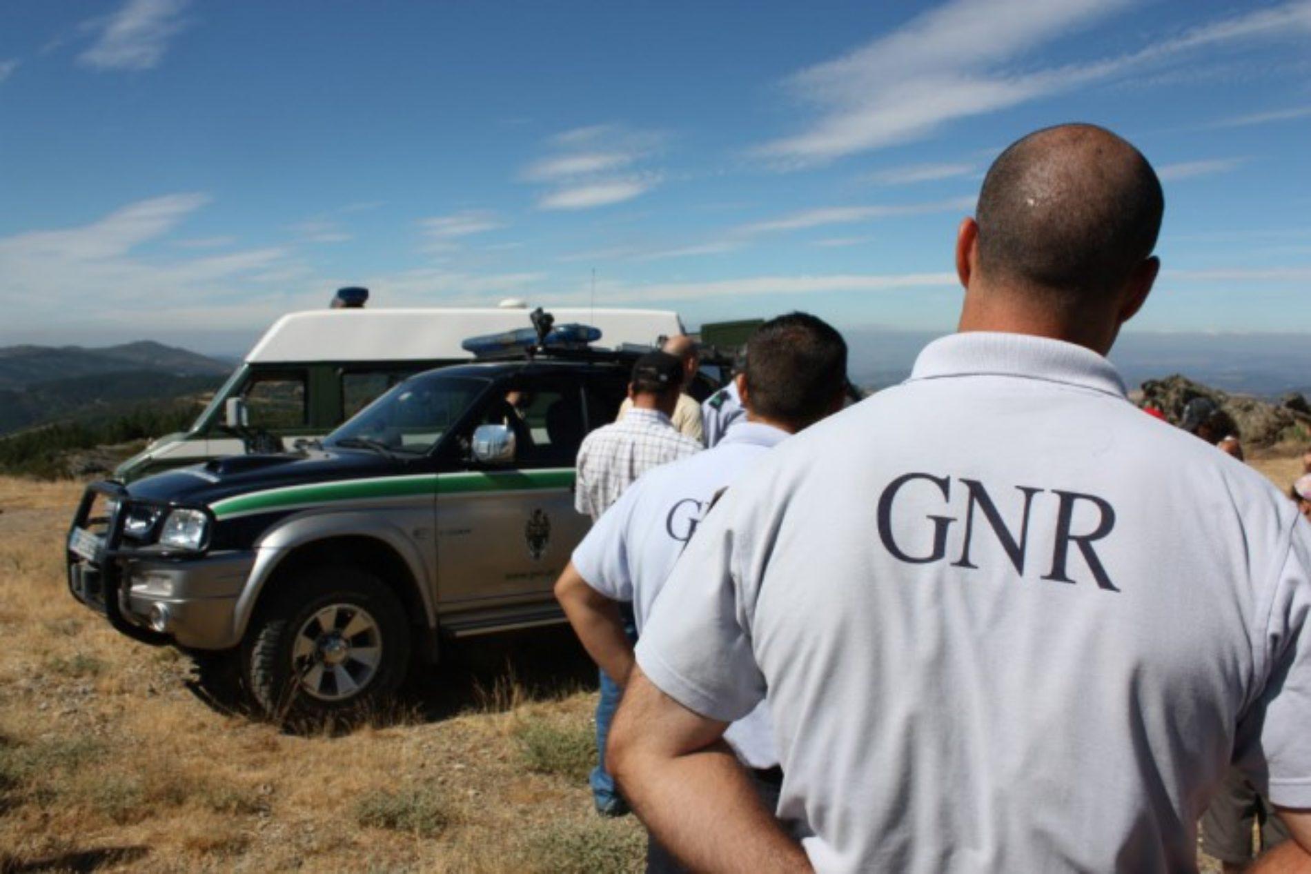 GNR atropelado por condutor que desrespeitou ordens em Albergaria-a-Velha