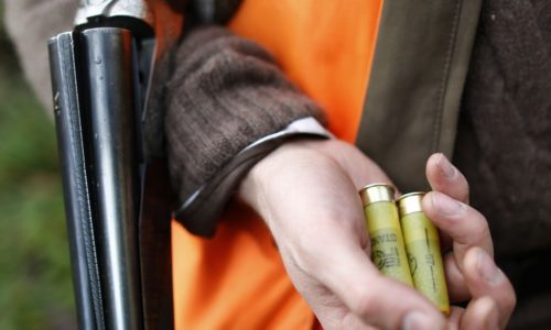 Região: Oito homens detidos por caça ilegal