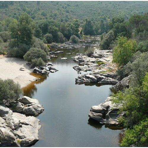 Pescador desaparecido em Seia encontrado morto no rio Mondego