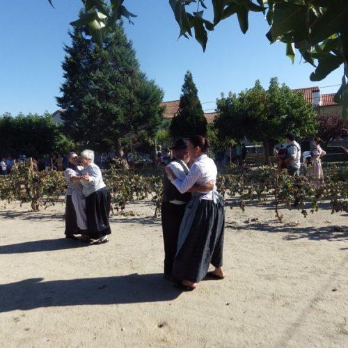 Festa das Vindimas realiza-se este fim de semana em Lagares da Beira