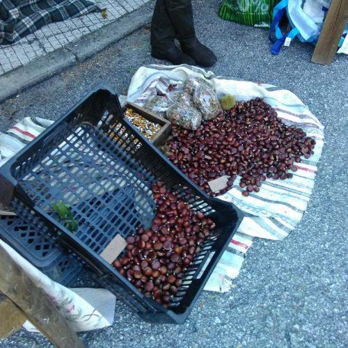 Região: Dez pessoas detidas por furto de 180 quilos de castanhas