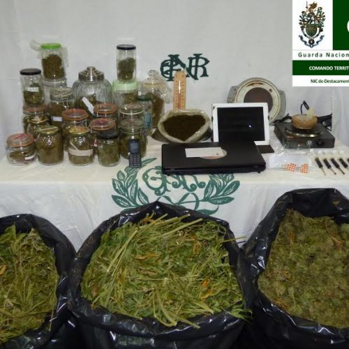 GNR apreendeu 14 quilos de cannabis no concelho de Oliveira do Hospital