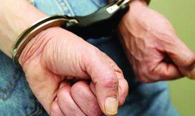 Gouveia: Homem que agredia psicologicamente mulher de 86 anos foi detido com armas