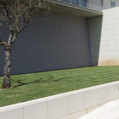 Misericórdia de Galizes vai criar Centro de Acolhimento Temporário para a deficiência