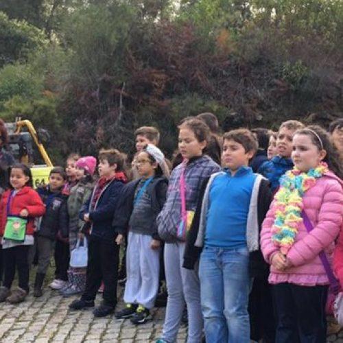 """Caule mobilizou crianças na """"caça"""" às espécies autóctones"""
