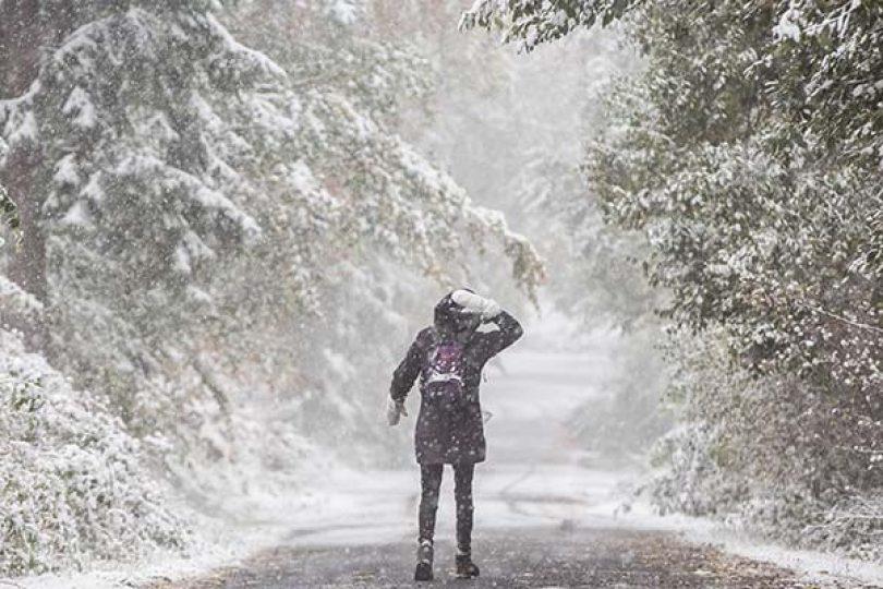 Neve coloca cinco distritos sob Aviso Amarelo