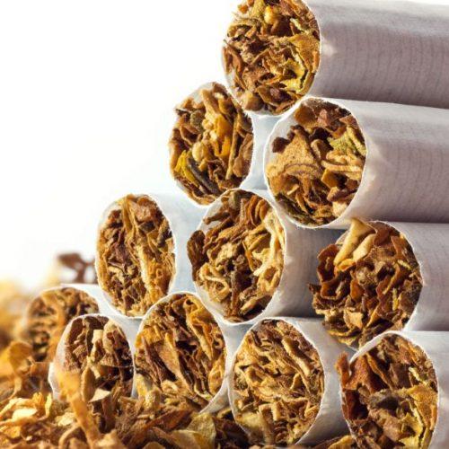 GNR apreende 48 toneladas de folha de tabaco em Castelo Branco