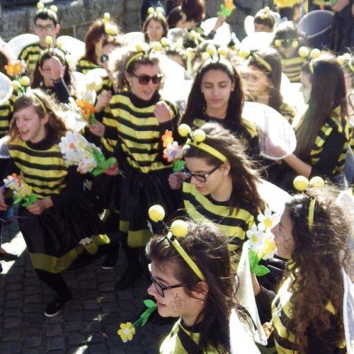 """Carnaval da Beira Serra sai pelas ruas de Lagares da Beira """"seja a chover ou a nevar"""""""