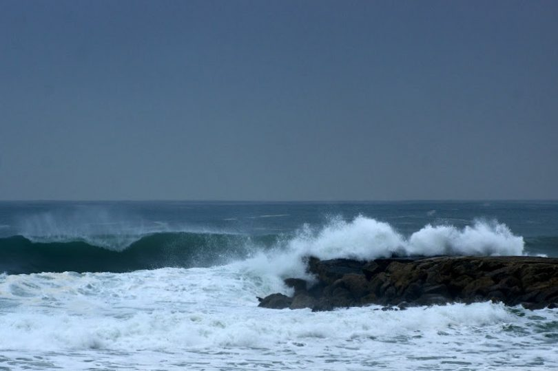 Baleia morta com 20 metros deu à costa a norte da praia de Mira