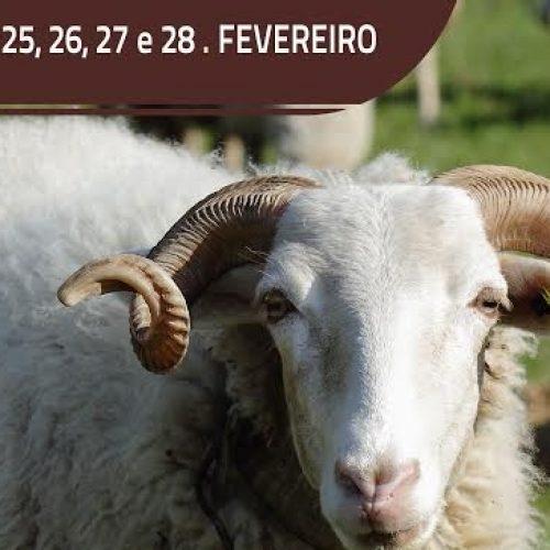 Seia realiza Feira do Queijo Serra da Estrela de 25 a 28 de fevereiro