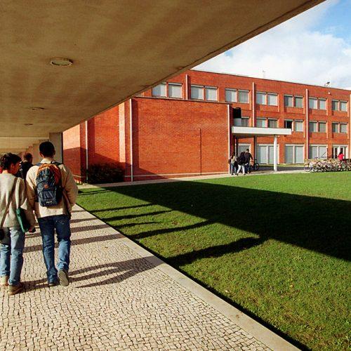Universidade de Aveiro credenciada para fazer sondagens eleitorais