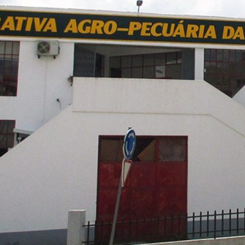 Cooperativa da Beira Central vota balanço e contas de 2016 em Assembleia Geral