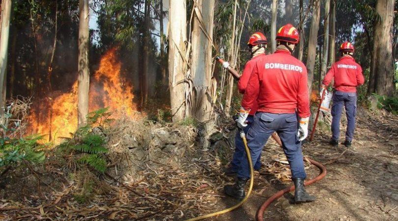 Dois concelhos em risco máximo de incêndio e 26 muito elevado