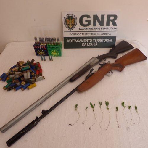 GNR apreendeu armas, munições e cannabis em Celavisa, Arganil
