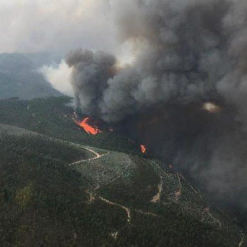 Proteção Civil acredita que incêndio de Pedrógão Grande pode ser extinto até ao final da manhã