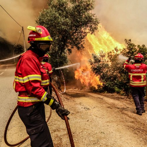 Mais de 100 bombeiros combatem chamas em Cinfães