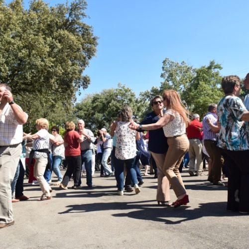 Seia: Mil e seiscentos seniores participaram em convívio