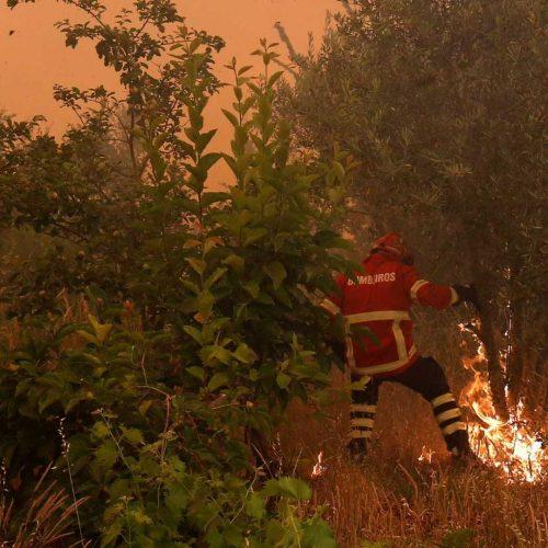 """Proteção Civil alerta para risco """"muito elevado e máximo"""" de incêndio"""