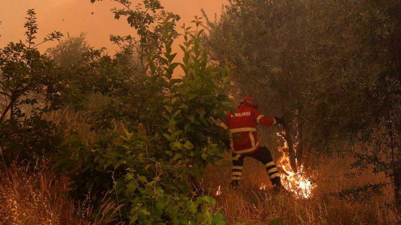Região: Homem de 83 anos detido por incêndio florestal