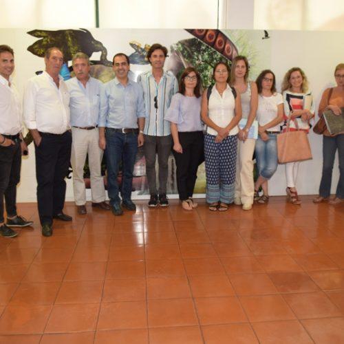 CineECo vai chegar aos concelhos da CIM das Beiras e Serra da Estrela