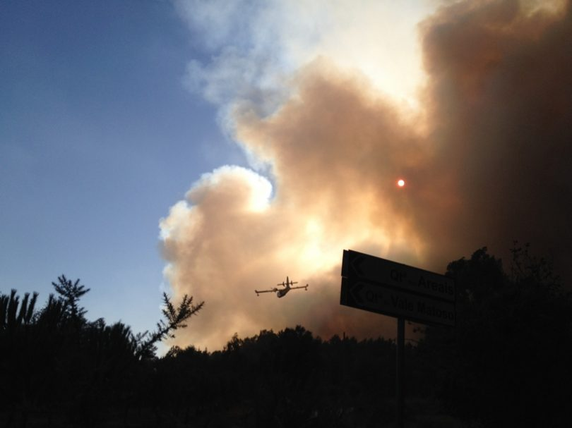 Incêndio de Tábua consumiu 120 hectares de mato e floresta