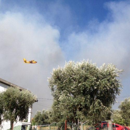 Mais de 340 bombeiros e 10 meios aéreos no combate ao incêndio que lavra em Tábua