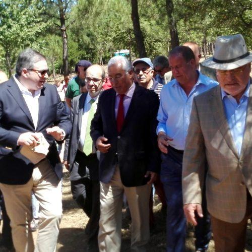 """Governo escolheu um """"concelho exemplar"""" para reforçar equipas de sapadores no país (com áudio)"""