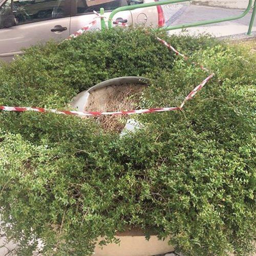 Menina de 13 anos morreu em Viseu ao cair de claraboia de garagem