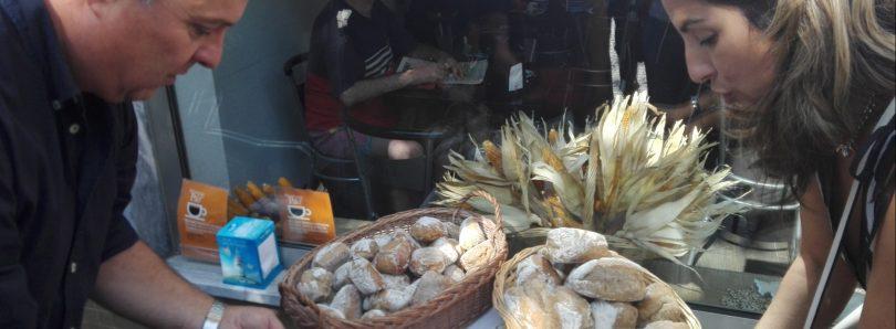 Agrupamento de Escolas aposta na comercialização de pão feito com sorelho